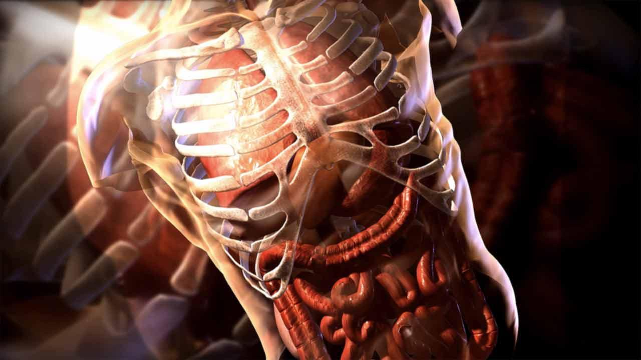Medical renderings
